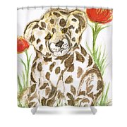 Young Cub Leopard Shower Curtain