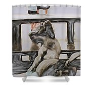 Young Gallery Visitor Shower Curtain
