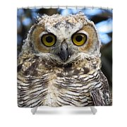 Young Hooter  Shower Curtain