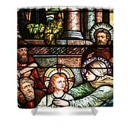 Young Jesus In The Temple Shower Curtain