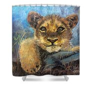 Young Lion Shower Curtain