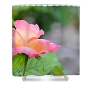 Young Love Shower Curtain