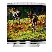 Young Moose In Autumn Shower Curtain