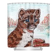 Young Mountain Lion Shower Curtain