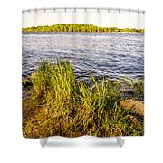 Young Reeds  Shower Curtain