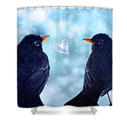 Young Robins In Love Shower Curtain