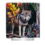 Young Timber Wolf Shower Curtain