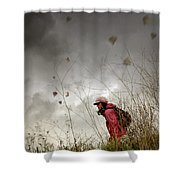 Young Walker Shower Curtain