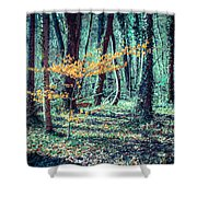 Youngster Shower Curtain