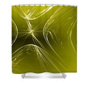 Your Possible Pasts Shower Curtain