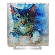 You've Got A Friend Shower Curtain by Paul Lovering