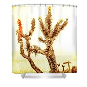 Yucca At Ave. J And 187 St. Shower Curtain