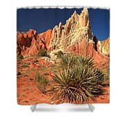 Yucca Badlands And Colors Shower Curtain