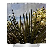 Yucca Blooms Shower Curtain