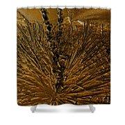 Yucca Gold Shower Curtain