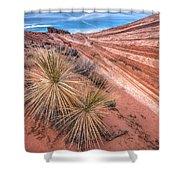Yucca Valley Shower Curtain