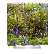 Yucca With Bonnets Shower Curtain