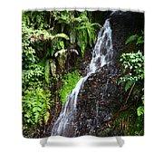 Yungas Waterfall Shower Curtain