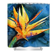 Yupo Paradise Shower Curtain