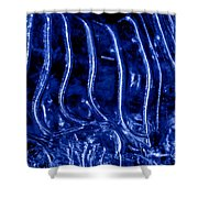Zebra Abstract Shower Curtain