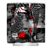 Zebra Art - 56a Shower Curtain