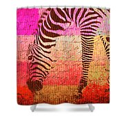 Zebra Art - T1cv2blinb Shower Curtain