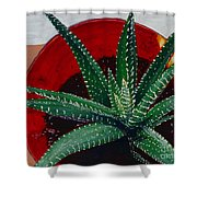 Zebra Cactus In Red Glass Shower Curtain