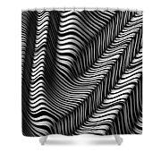 Zebra Folds Shower Curtain
