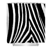 Zebra Hide Shower Curtain