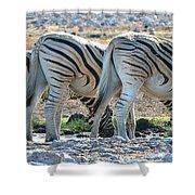 Zebra Lineup Shower Curtain
