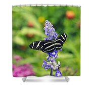 Zebra Longwing Shower Curtain by Laurie Perry