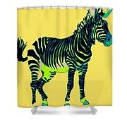 Zebra Pop Art Shower Curtain
