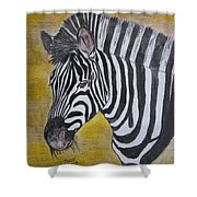 Zebra Portrait Shower Curtain