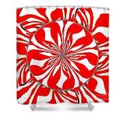 Zebra Red Swirling Kaleidoscope  Shower Curtain
