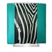 Zebra Stripe Mural - Door Number 1 Shower Curtain
