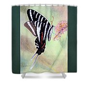 Zebra Swallowtail Butterfly By George Wood Shower Curtain