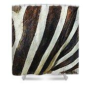 Zebra Texture Shower Curtain