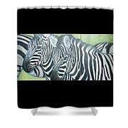 Zebra Triptych General Shower Curtain