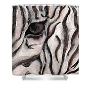 Zebra Watercolor Shower Curtain