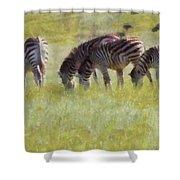 Zebras In Africa Shower Curtain