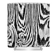 Zebras In Wood Shower Curtain