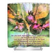Zechariah 4 10 Shower Curtain