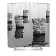Zed Black And White Shower Curtain