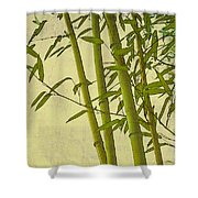Zen Bamboo Abstract I Shower Curtain