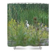 Zen Egret Shower Curtain