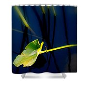 Zen Photography V Shower Curtain