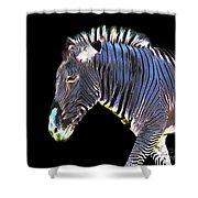 Zephyrus Zebra II Shower Curtain