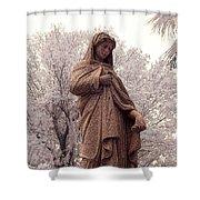 Ziba King Memorial Statue Front View Florida Usa Near Infrared Se Shower Curtain