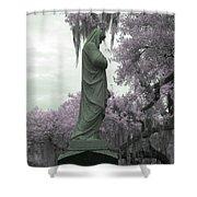 Ziba King Memorial Statue Side View Florida Usa Near Infrared Gr Shower Curtain