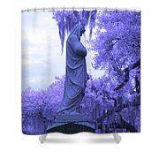 Ziba King Memorial Statue Side View Florida Usa Near Infrared Shower Curtain
